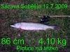 Petr Jalovecký, Sázava Soběšín, 12.07.2009, štika, plotice na těžko, 86 cm, 4,10 kg