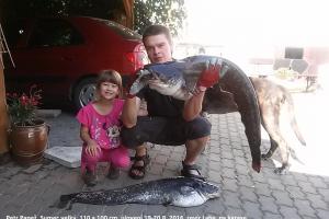 Úlovky našich rybářů